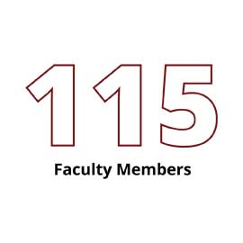 Infographic: 115 Faculty Members