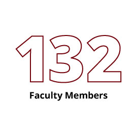 Infographic: 132 Faculty Members